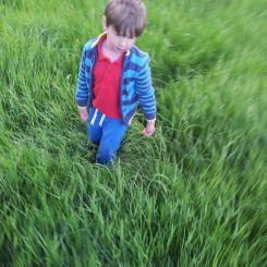 Boy in grass Sian Evans 2